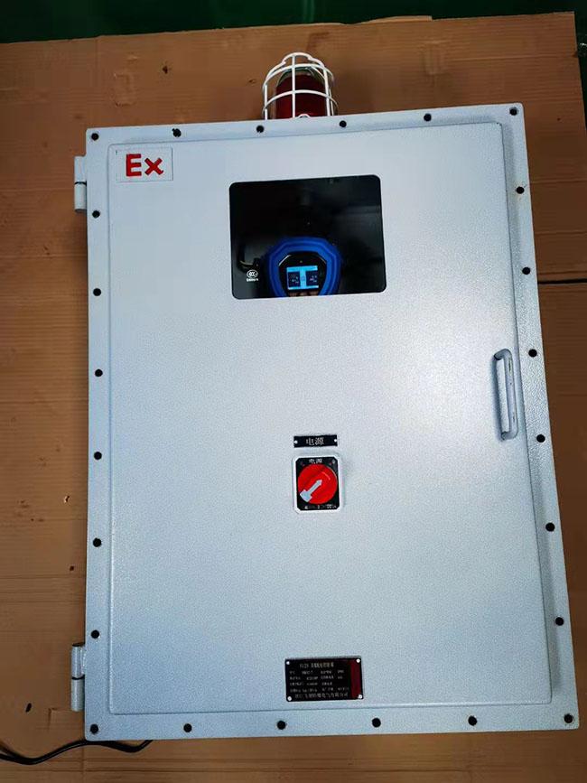 防爆型二合一气体检测仪2.jpg